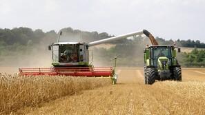 Irsk jordbrugssektor falder 15 procent efter svær sæson