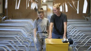 Driftleder har øget antallet af levendefødte smågrise markant