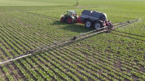 Båndsprøjtning i roerne udvides markant til kommende sæson