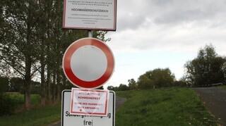 Det vrimler med vildsvin ved den tysk-polske grænse