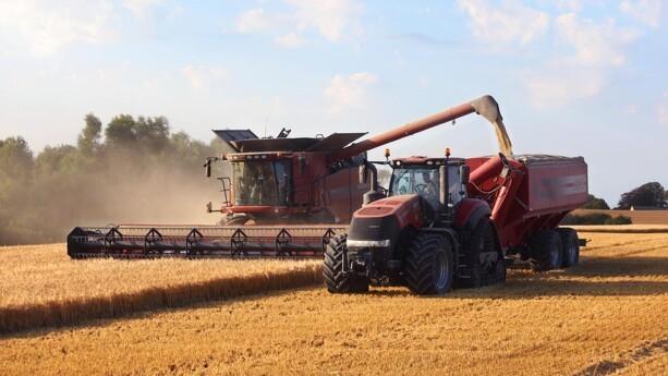 Høstdato og efterafgrøders effektivitet kan forudsiges
