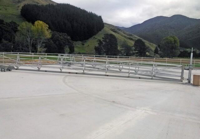 New Zealand: Kun fire uger tilbage af sæsonen