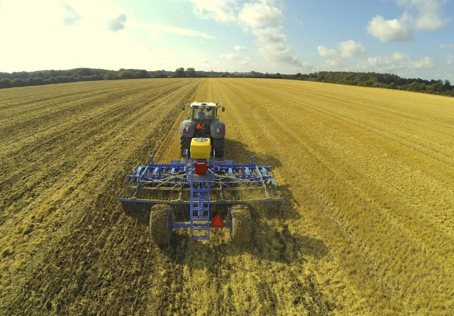Ukrudtsstrategi i økologisk jordbrug