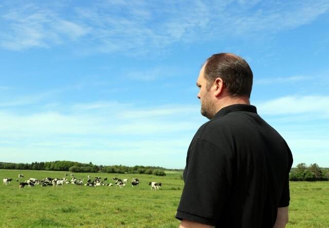 Værdien af græsfoder bliver ringere med paragraf 3 krav