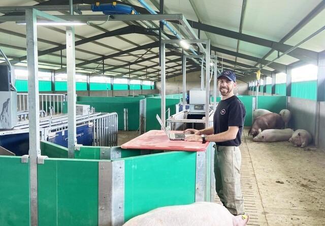 Sydafrikansk svineproduktion har fokus på effektivitet og teknologi