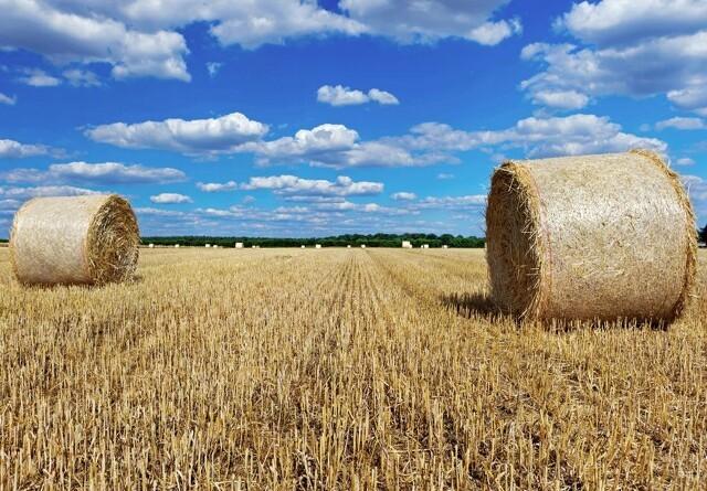 Er den negative prisudvikling på landbrugsejendomme vendt?