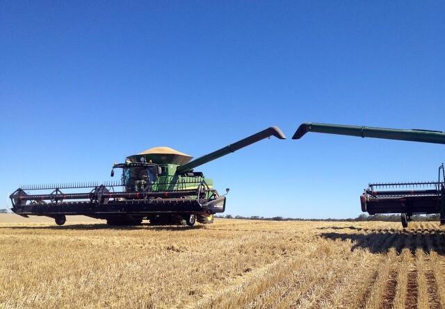 Høstkapacitet og korntransport skal hænge sammen