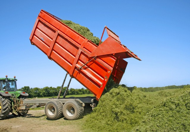 Stil krav til den gode grovfoderkvalitet
