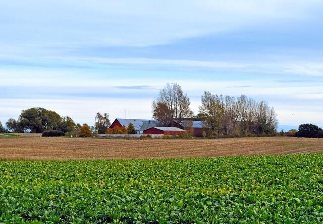 Følger medarbejderne med ved køb og salg af en landbrugsejendom?