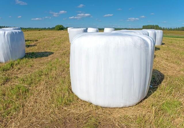 Fokus på grovfoderets bjærgningsomkostninger