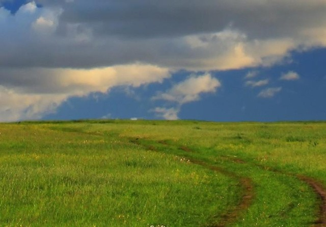 Gør dig tanker om markdriftens fremtid