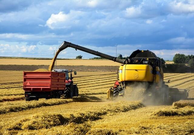 Ny høst kræver tilskud af E-vitamin