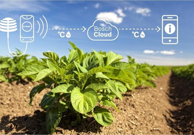 Sensorteknologi gør landbruget mere effektivt og bæredygtigt