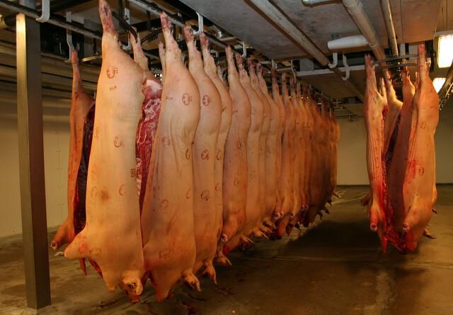 Analytiker: Dyster svineprognose er helt ude i hampen