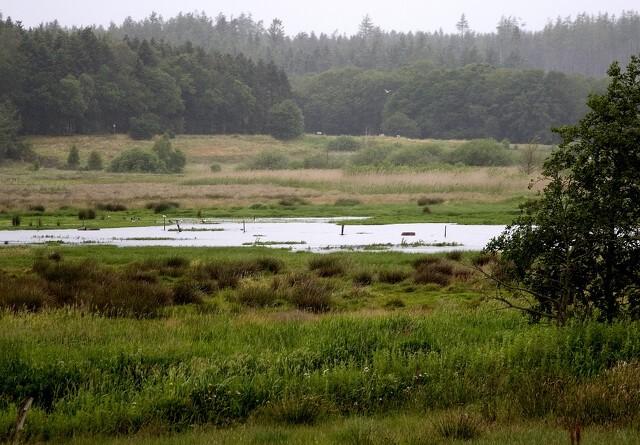 Landbruget uenig med Klimakommissionen
