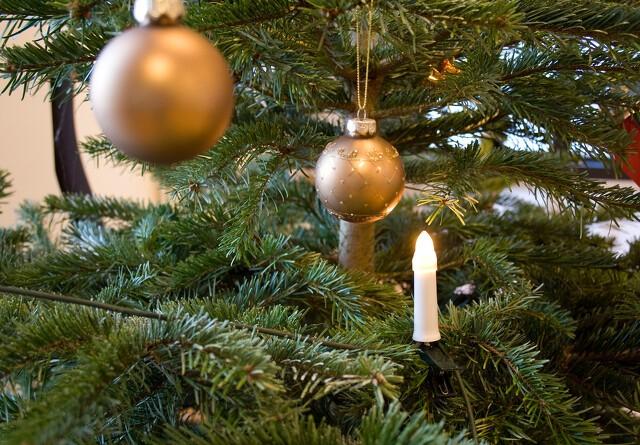 Mangel på juletræer skyder prisen i vejret