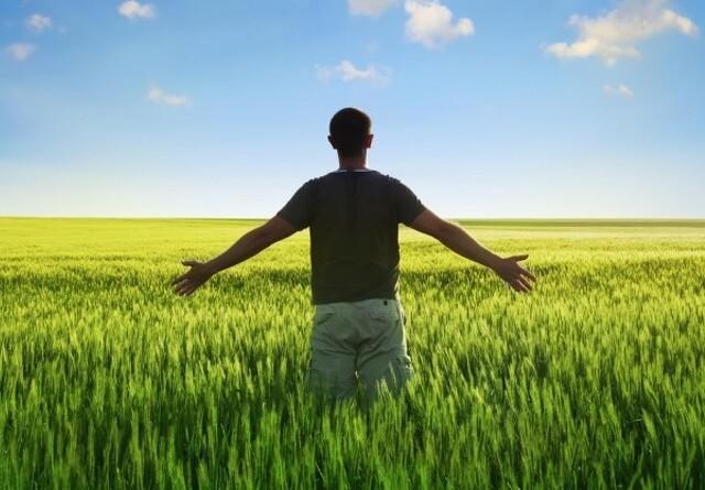 Fuld landbrugsstøtte kræver flere afgrøder