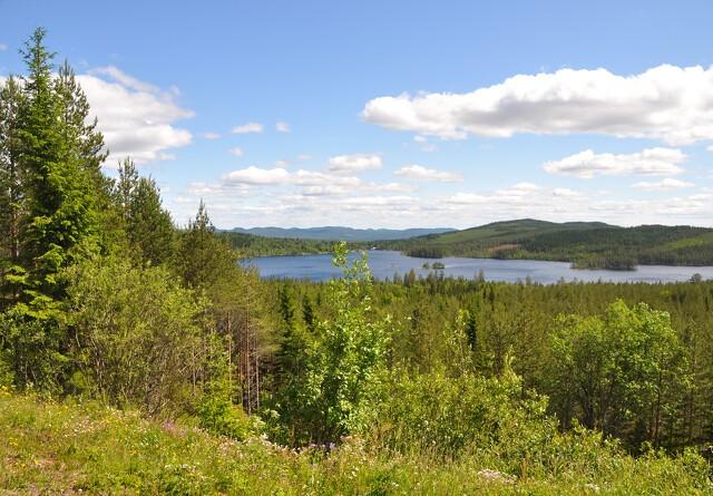 Nordjysk landmand må dyrke sin jord