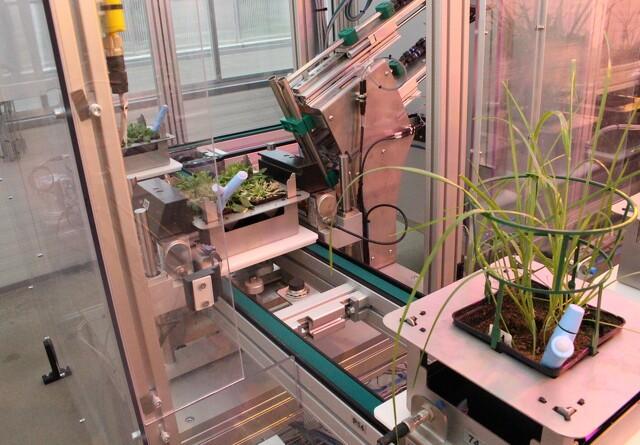 High tech-gartner: Nyudviklet robot passer selv 117 planter