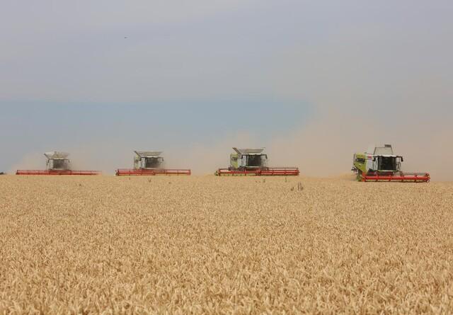 Jyske Markets: Eksplosiv stigning til den amerikanske hvede