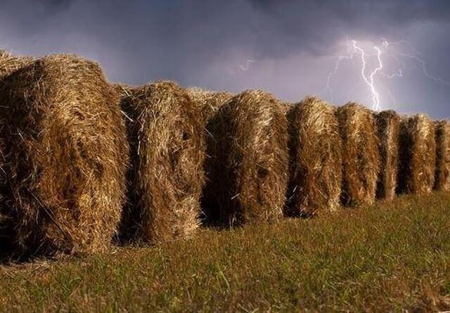 Topdanmark: Lyn kan give store ødelæggelser i landbruget