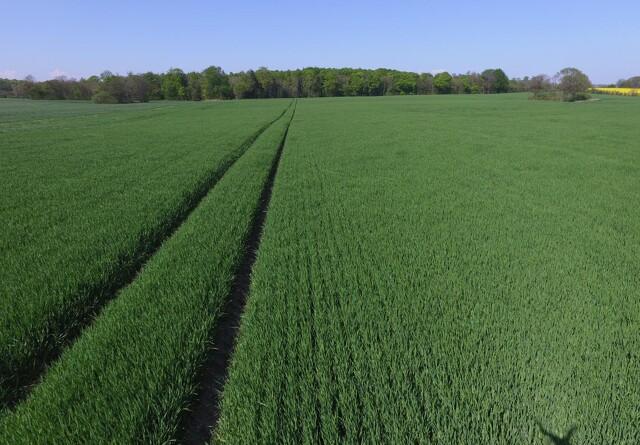 Kommune vil lagre CO2 i landbrugsjord