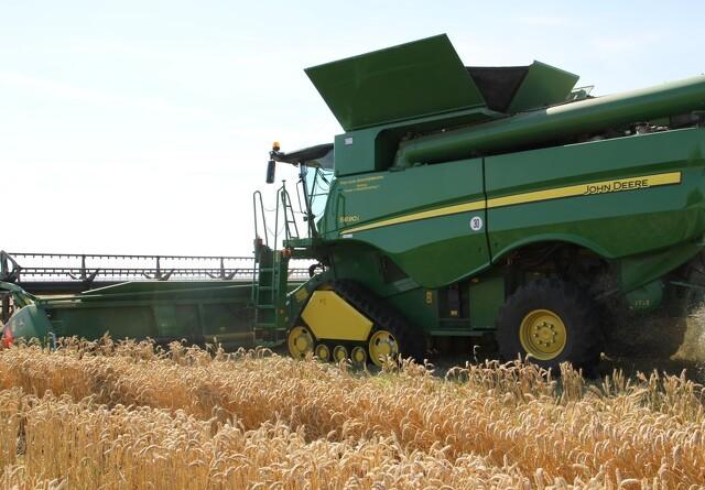 Jyske Markets: Australsk hvedeproduktion i stor opjustering
