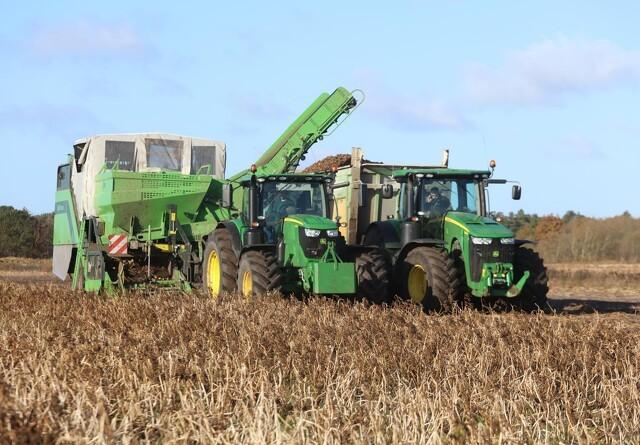 28.600 gule marker er blevet grønne