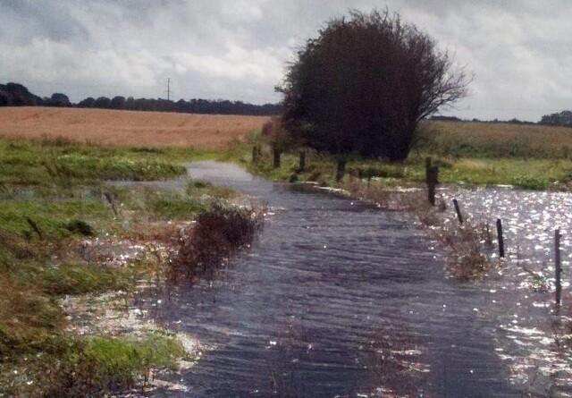 Landmænd og lodsejere vinder vigtigt vandløbs-opgør