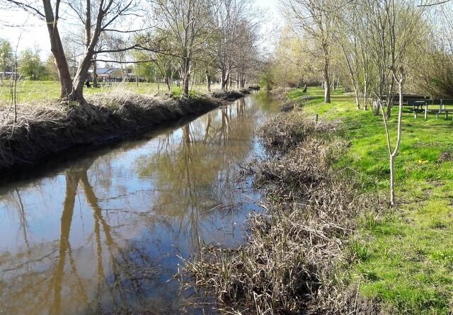 Gefion vinder principiel vandløbssag i Miljøklagenævnet