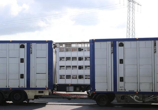 Transportører truer med strejke