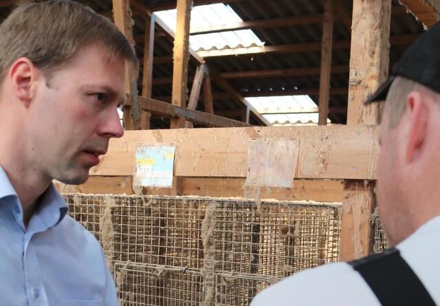 LandboNord til minkavlere: Bevar roen og søg specialiseret rådgivning