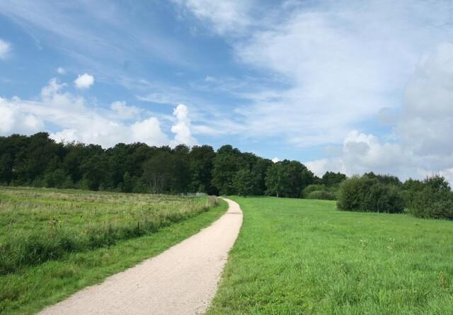 Ansøgninger om 2300 hektar nye skove