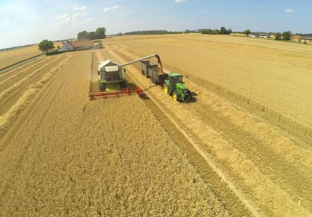 Afgrøderne sætter nye sæsonmæssige pristoppe