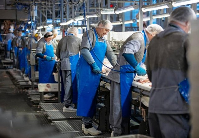 Danish Crown ansætter 100 nye medarbejdere