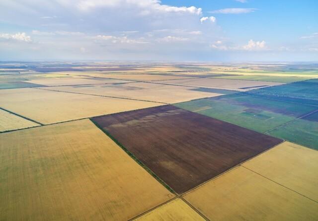 Bill Gates er USA's største ejer af landbrugsjord