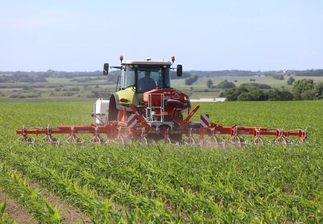 Jyske Markets: USDA leverer overraskelser i forbindelse med WASDE