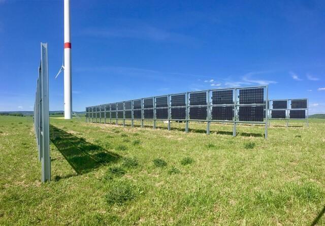 Vil forene landbrug og solenergi på samme areal