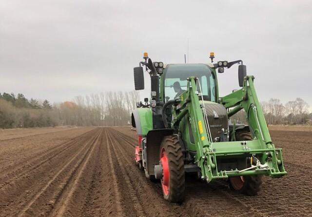 Mejnerts har sat året første kartofler