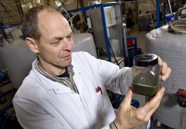 Fremtidens biogas