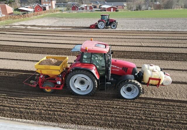 Specialtilpasset kartoffellægger på Samsø