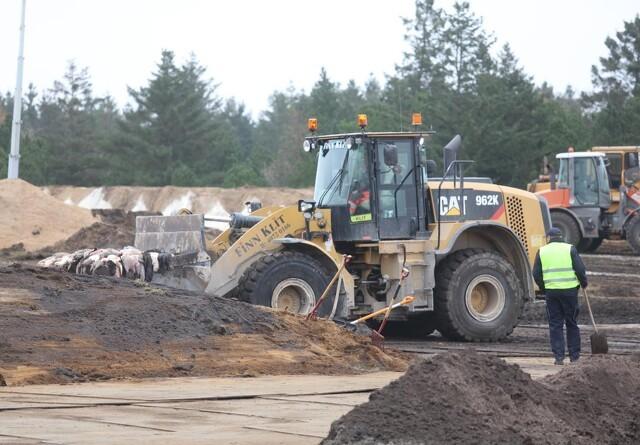 Fordobling af budget til minkopgravninger møder kritik
