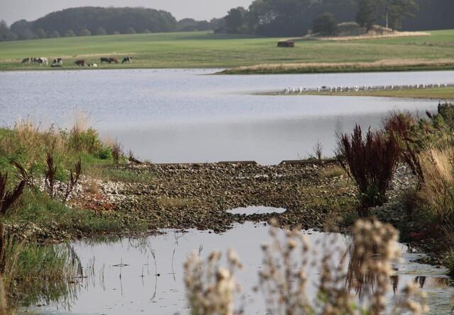 Høst af enge og udtagning af jord kan forløse ådalenes potentiale