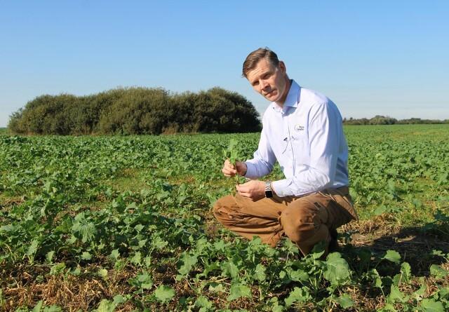 Peter Kiær: Regeringens landbrugsudspil fører folk bag lyset