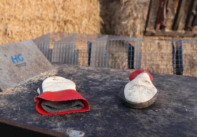 Minkavlere sender en byge af spørgsmål til Rasmus Prehn