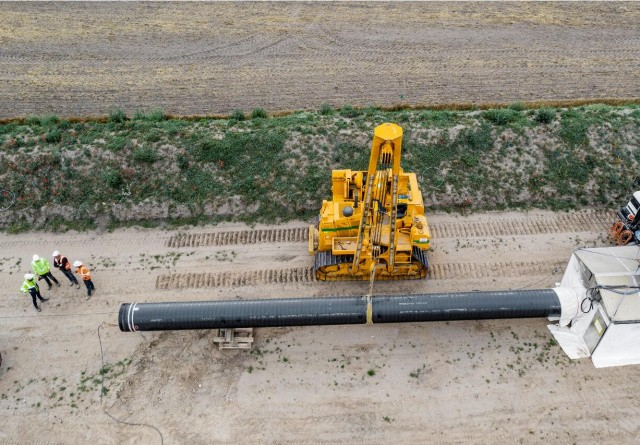 Hasselmus og flagermus stopper byggeriet af Baltic Pipe projektet