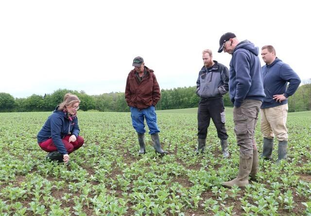 Gods har planteavlskonsulent med i marken fem gange om året: Giver uden tvivl overskud