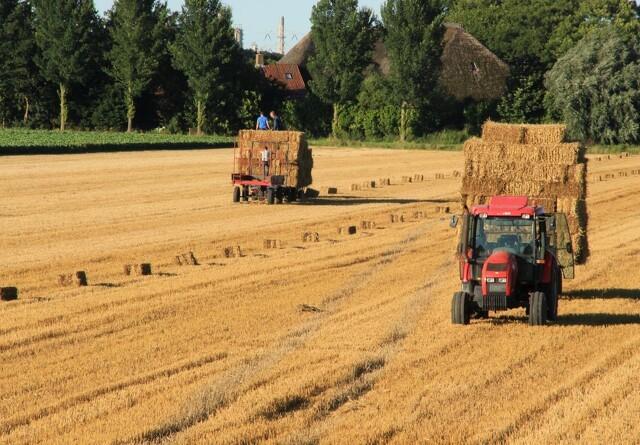 EU-midler har ikke gjort landbruget mere klimavenligt