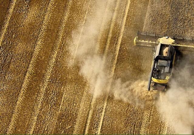 Sagro: En sen høst vil øge presset på såningen af efterafgrøder