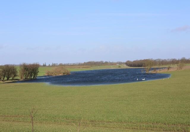 Velas: Vandplaner kan ramme landbrug og lokalsamfund meget hårdt - og uden den ønskede effekt